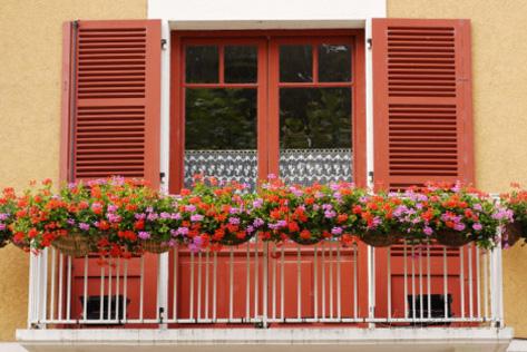 Балконски и градински цветя