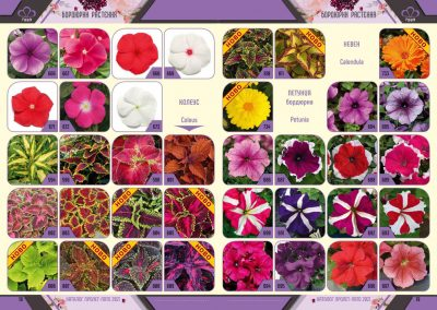 Razcvet_Catalogue-Spring-Summer-2021--10
