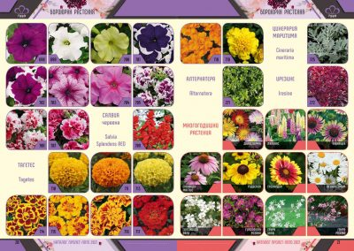 Razcvet_Catalogue-Spring-Summer-2021--11
