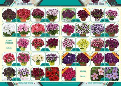 Razcvet_Catalogue-Spring-Summer-2021--4