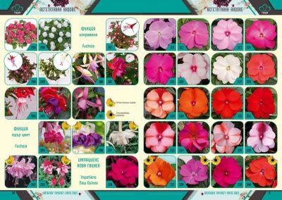 Razcvet_Catalogue-Spring-Summer-2021--6