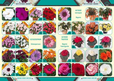 Razcvet_Catalogue-Spring-Summer-2021--7