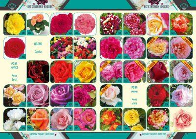 Razcvet_Catalogue-Spring-Summer-2021--8