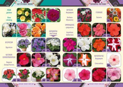 Razcvet_Catalogue-Spring-Summer-2021--9